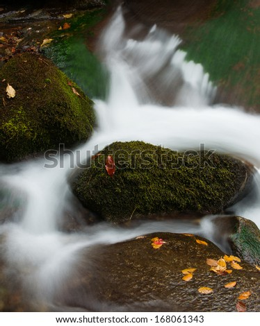 Fallen leaves and stream - stock photo
