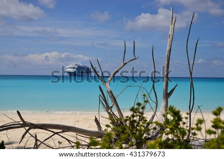 fallen tree on a seashore with a cruise ship on a back - stock photo
