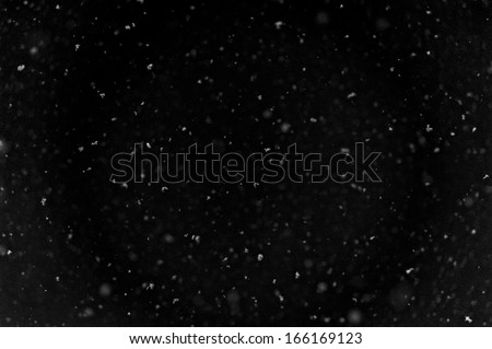 Falling snow background - stock photo
