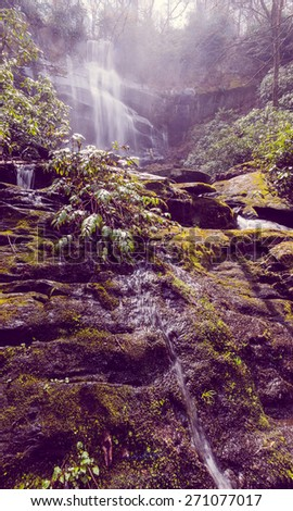Falls Branch Falls with Fog  - stock photo