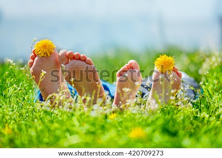 Family feet with dandelion  flowers lying on green grass in sunny day. Concept happy childhood. - stock photo