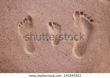 Family footprints in the sand on the beach - stock photo