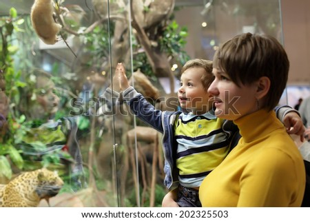 Family looking at wild animals in a museum - stock photo