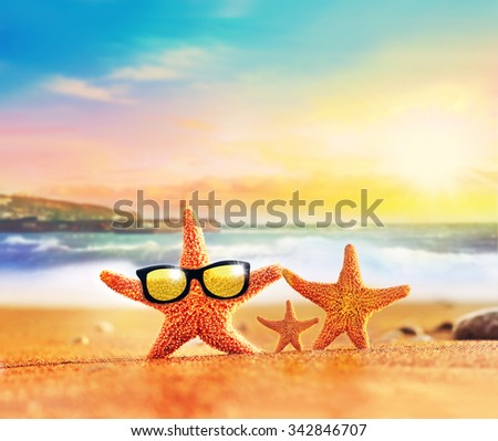 Family of starfishes on the summer beach - stock photo