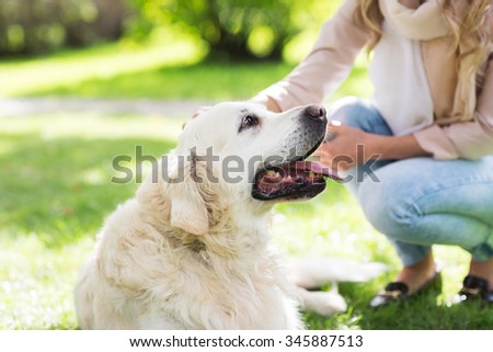 family, pet, animal and people concept - close up of woman with labrador dog on walk in park - stock photo