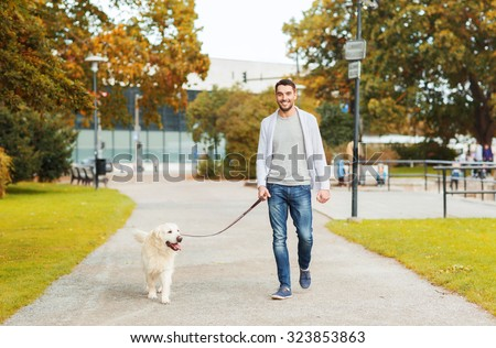 family, pet, domestic animal, season and people concept - happy man with labrador retriever dog walking in autumn city park - stock photo