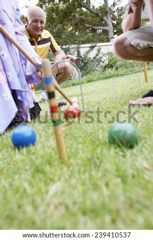 Family Playing Croquet - stock photo