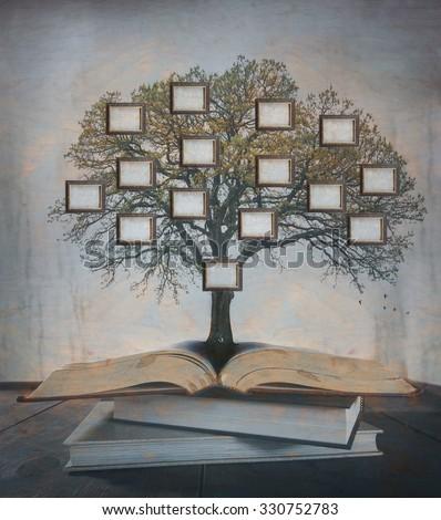 Family Tree, genealogy. - stock photo