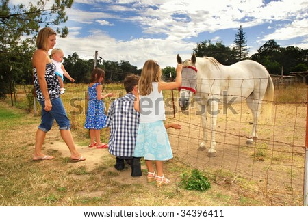 Family visiting and feeding an injured horse on a farm - stock photo