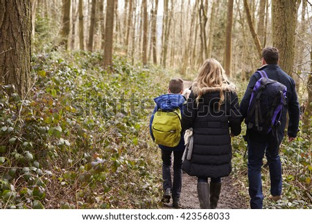 Family walking together through a wood, back view close up - stock photo