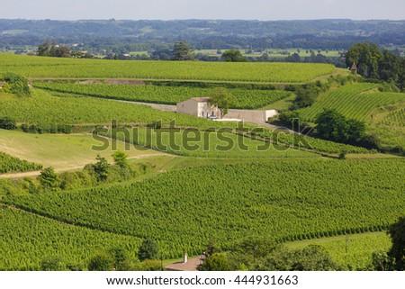 Famous French Vineyard at Saint Emilion town near Bordeaux, France - stock photo