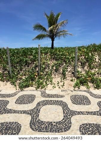 Famous Ipanema beach mosaic sidewalk and palm tree, Rio de Janeiro, Brazil - stock photo