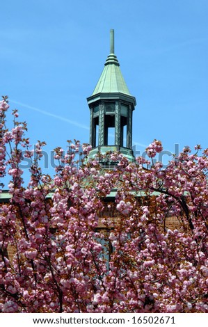 Famous landmark in downtown Asheville, North Carolina has copper steeple that is surrounded by blooming cherry trees. - stock photo