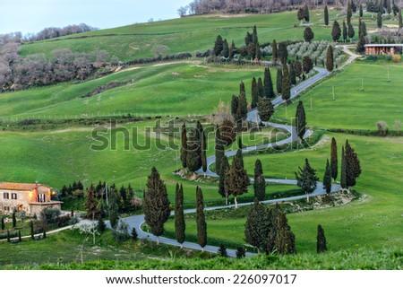 Famous road near Monticchiello, Tuscany, Italy - stock photo