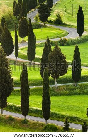 Famous road near small city Monticchiello, Tuscany, Italy - stock photo
