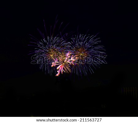 Fantastic colorful fireworks  in a night sky - stock photo