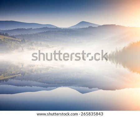 Fantastic foggy day and bright hills by sunlight. Dramatic morning scenery. Carpathian, Ukraine, Europe. Beauty world. Flip canvas vertical. Double exposure effect. - stock photo