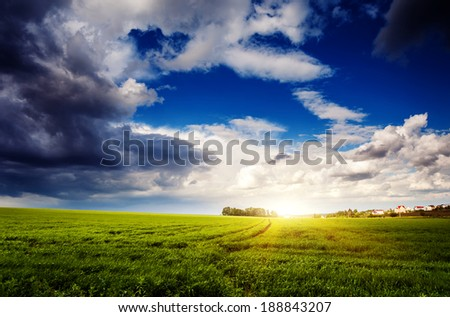 Fantastic green field at the dramatic overcast sky. Ukraine, Europe. Beauty world. - stock photo