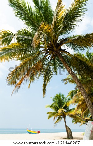Fantastic palm tree over tropical beach in luxury resort - stock photo