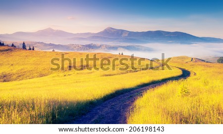 Fantastic sunny hills under morning blue sky. Dramatic scenery. Carpathian, Ukraine, Europe. Beauty world. - stock photo