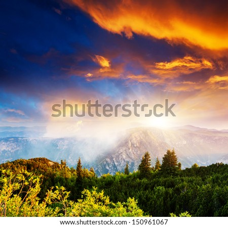 Fantastic view Tara river gorge - is the second biggest canyon in the world and the biggest one in Europe in the national park Durmitor in Montenegro. Balkans. Beauty world. - stock photo