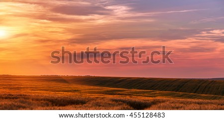 Fantastic wheat field at the sunset. Colorful sky. golden ears of wheat or rye on sky background with clouds, under the influence of sunlight. Rich harvest Concept. majestic rural landscape. - stock photo