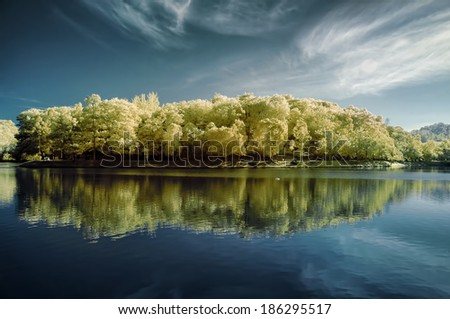 Fantasy Autumn of yellow trees with reflection on lake - stock photo