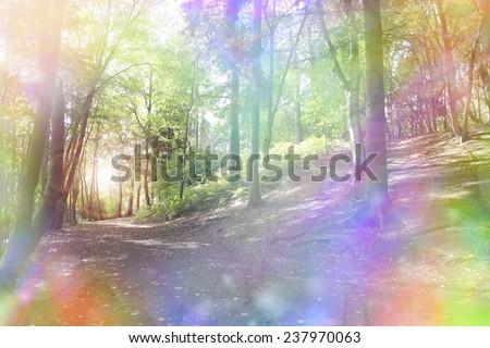 Fantasy rainbow bokeh woodland  - Woodland path and light shining through trees with a fantasy rainbow aura - stock photo
