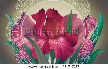 Fantasy Red Passion Irises with vintage lace for design of posters, banner, birthday cards, greetings, cover, magazines and other. Original style of unique flowers. Beauty and fresh spring collection. - stock photo