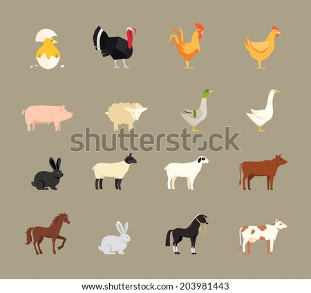 Farm animals set in flat style with a chicken  turkey  hen  cock  pig  sheep  goose  duck  rabbit  goat  beef coe  dairy cow  horse and shire horse - stock photo