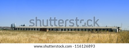 Farm for growing pigs. Panoramic image - stock photo