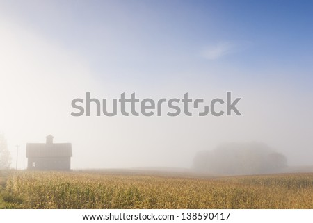 Farm house and an island of trees in a foggy early morning corn field, Stowe Vermont, USA - stock photo