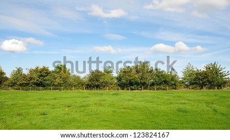 Farm Landscape of a Green Field and Blue Cloudy Sky Above - stock photo