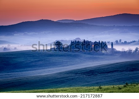 Farm of olive groves and vineyards in foggy morning - stock photo