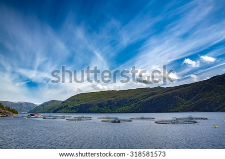 Farm salmon fishing in Norway - stock photo