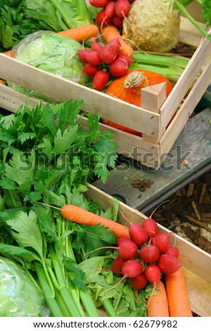 Farm vegetable market - stock photo