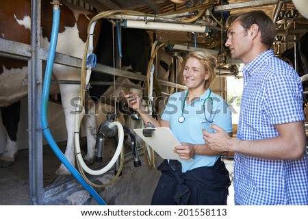 Farmer And Vet Inspecting Dairy Cattle Being Milked - stock photo
