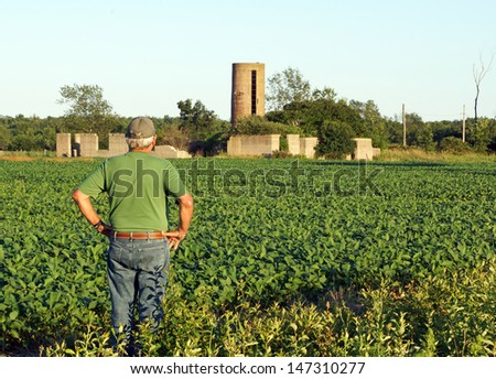 Farmer looks at the foundation of his old barn while checking what appears to be a bumper crop of soybeans for this year's harvest. - stock photo