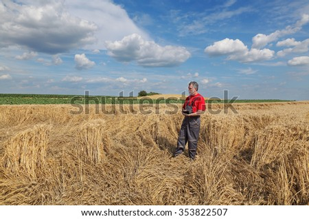Farmer or agronomist examine damaged wheat plant in field using tablet, harvest time - stock photo