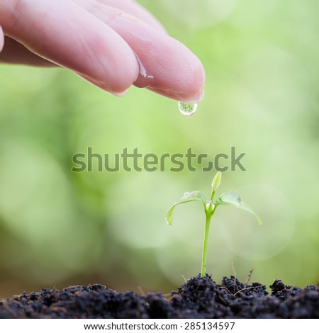 Farmer's hand watering a young plant on soft green background - stock photo
