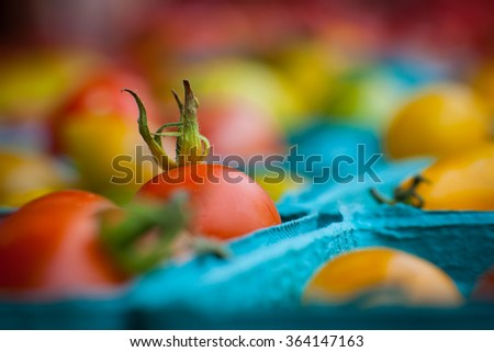 Farmer's market grape cherry tomatoes - stock photo