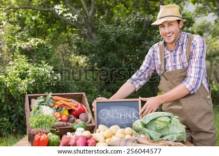 Farmer selling organic veg at market on a sunny day - stock photo