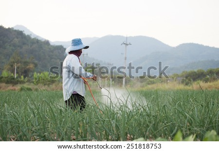 farmer spraying pesticide at onion field in thailand - stock photo