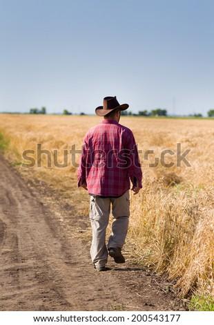 Farmer with hat walking in wheat field - stock photo