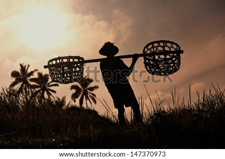 Farmer with wooden tool to prepare paddy field - stock photo