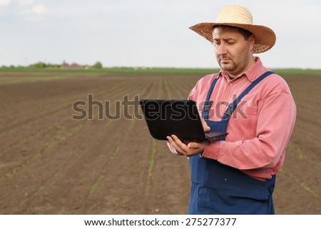 Farmer working on computer in corn field with copy space - stock photo