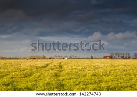 farmhouse and cattle on pasture after storm before sunset - stock photo