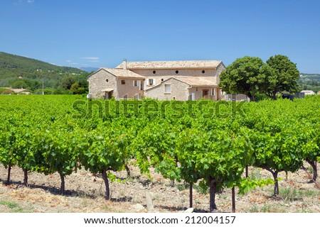 farmhouse with vineyard  - stock photo