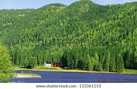 Farmhouses on lake in forrest - stock photo