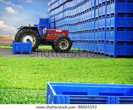 Farming, bio farm, agriculture production - stock photo